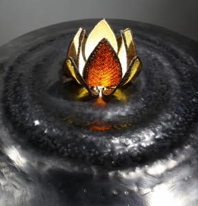 lotus sur pied